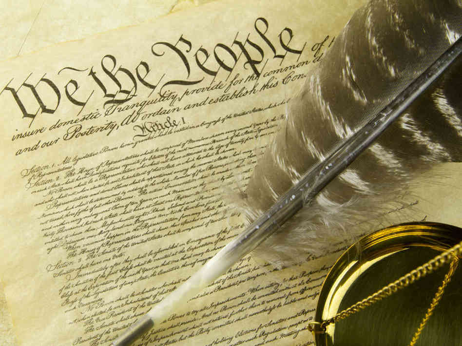 ammon federal government constitution