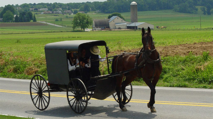 Amish Farmer Jailed Over Herbal Salve Label