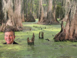 Swimming with the Gators in Idaho's Legislative Swamp
