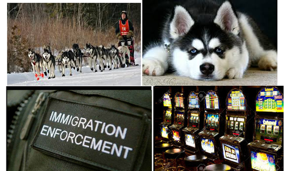 Immigration, Sled Dogs, & Slot Machines!