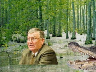 Swamp Master Bedke Meets the Gator