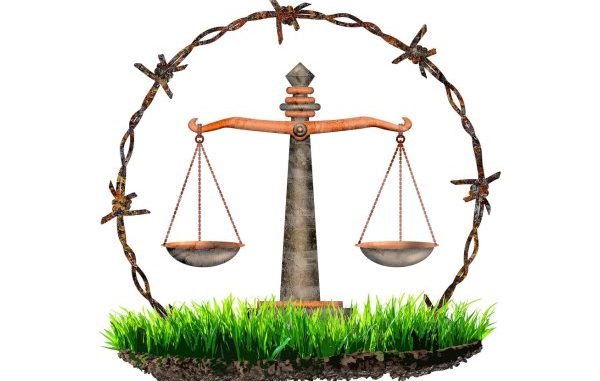 The Consequences of Environmental Litigation