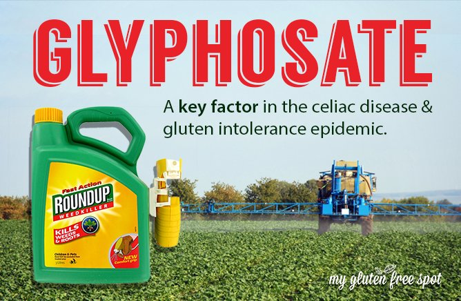 L'Europe impopulaire - Page 20 GLYPHOSATE