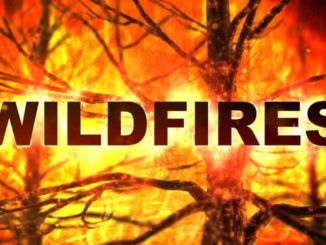 Wildfires Rage in the West Burning Nearly 1.5 Million Acres