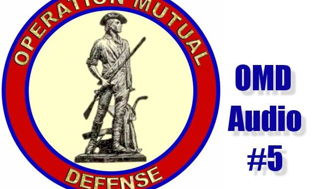 Operation Mutual Defense Audio #5 Released