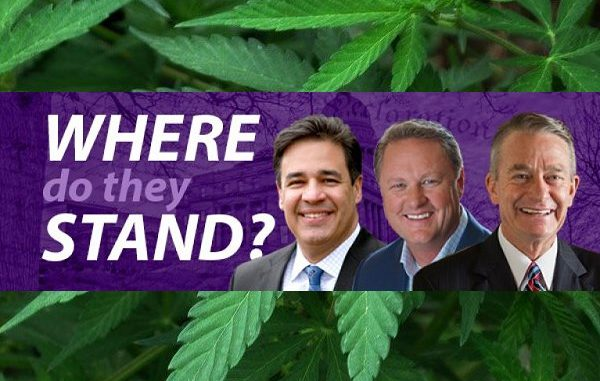 Idaho Governor Candidates: Marijuana and CBD Oil