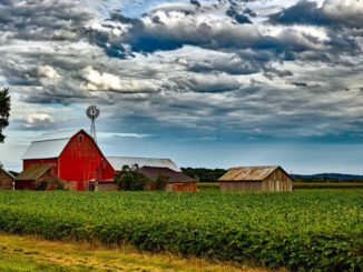 Farmers Disappointed House Votes Against Farm Bill