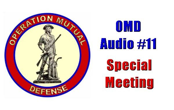 Operation Mutual Defense Audio 11 Special Meeting