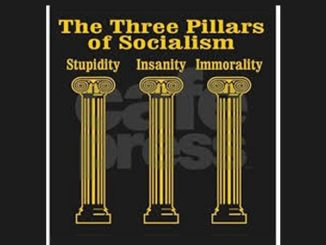 Dimm's Drive for Power Includes the Failings of Socialism