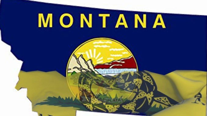 Montana Election Review 2018