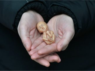 """OBGYN: Free Abortion Drugs Are Medical """"Malpractice"""""""