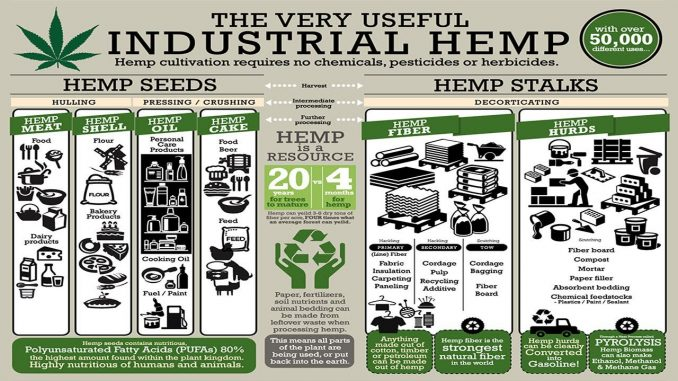 What Happened to Hemp in Idaho?