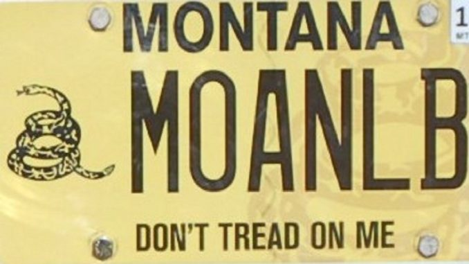 Second Amendment Goes To The Ballot Box In Montana