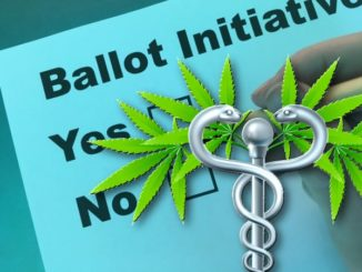 Medical Marijuana and Ballot Initiatives