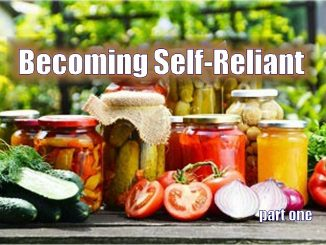 Become A Self-Reliant American