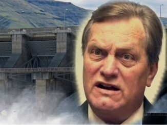 Simpson Should Put Idaho First and Do No Harm