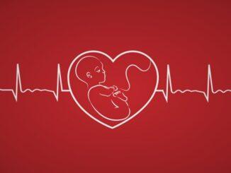The Heartbeat Bill